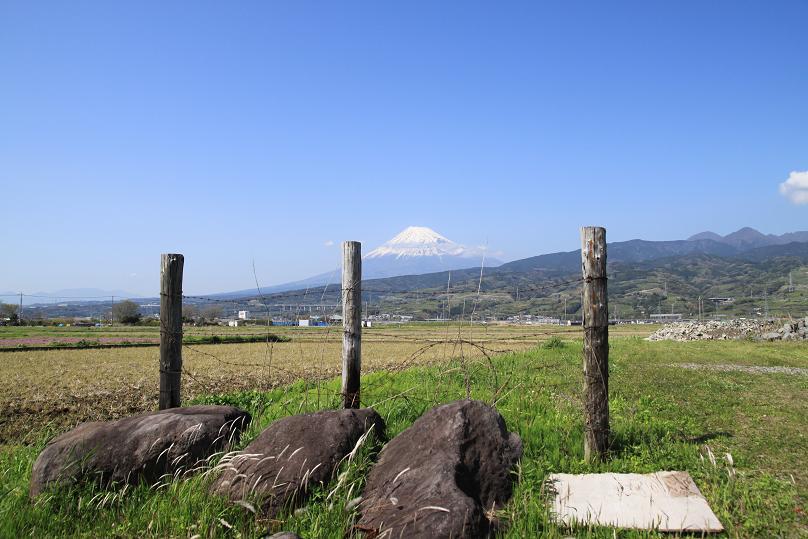 20130409東田子の浦3a