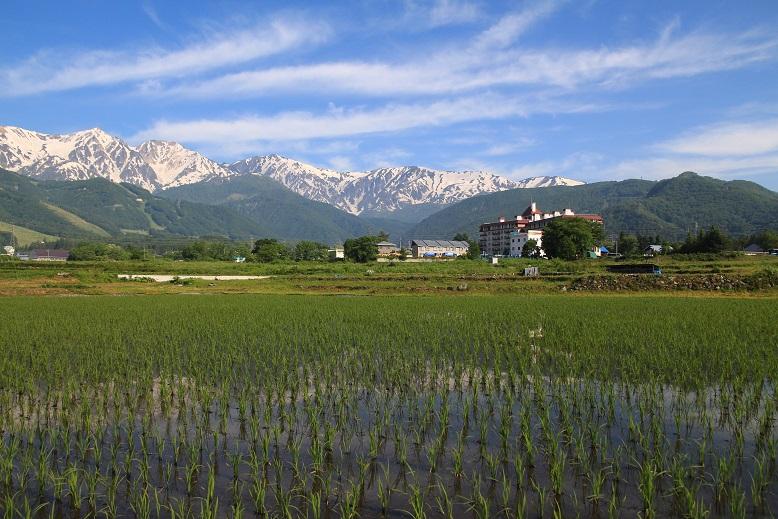20130609白馬村a