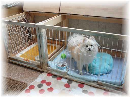 20130525犬小屋3