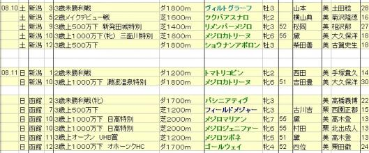 2013081011想定