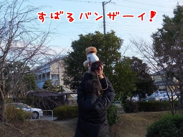 20140114-6.jpg