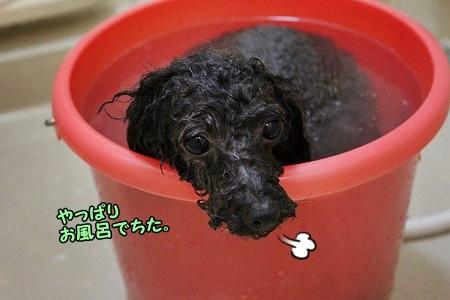 そうそう、お風呂だったね^m^