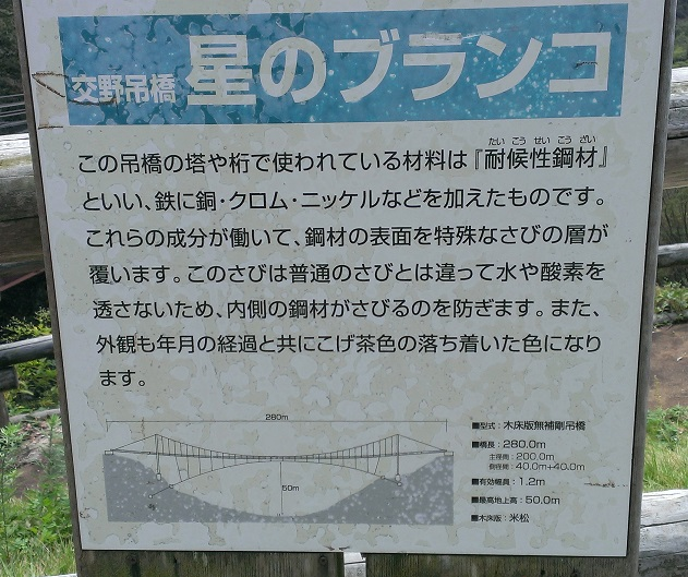 大阪府民の森5