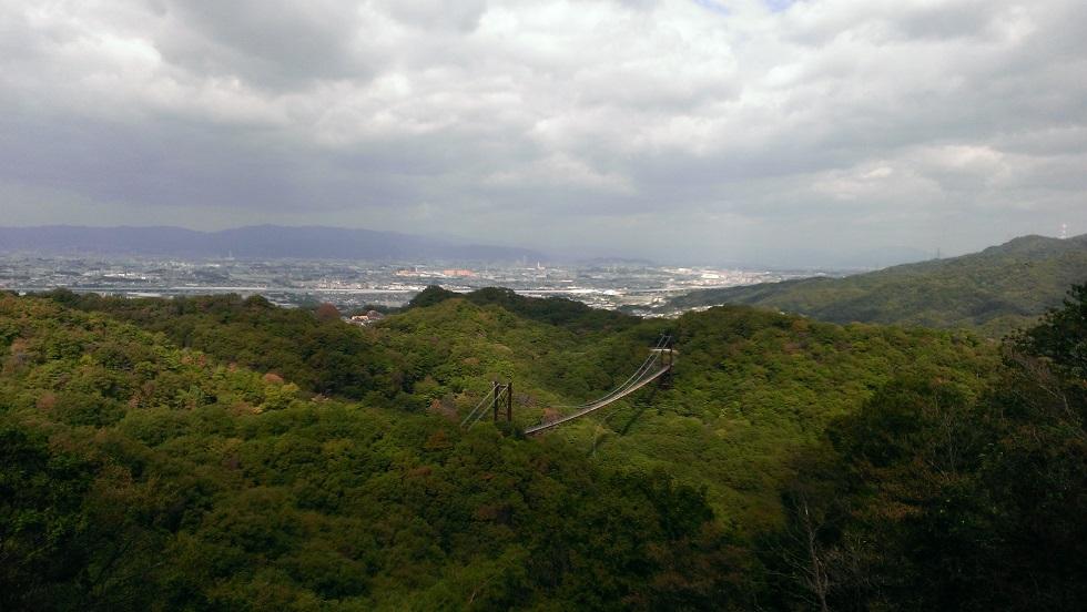 大阪府民の森7