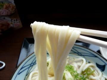 丸亀製麺ひやかけ2