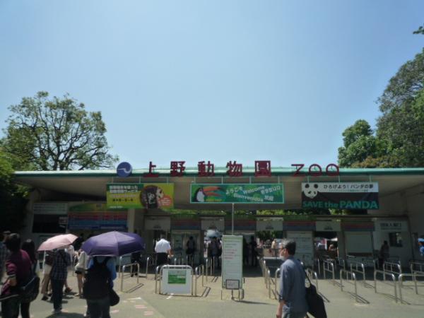 上野動物園P1080406