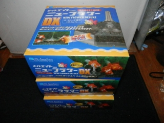 PC010045.jpg