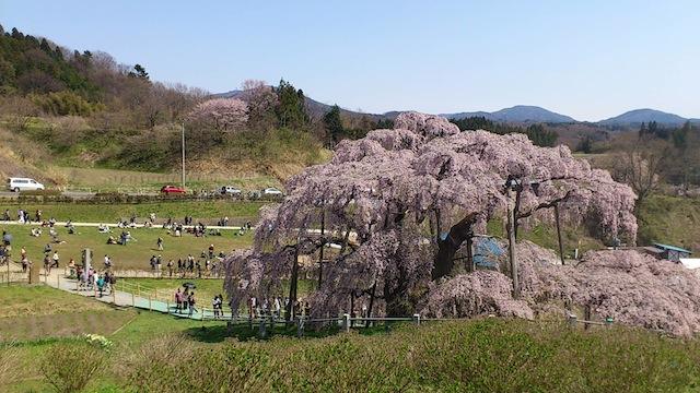 三春201204_3