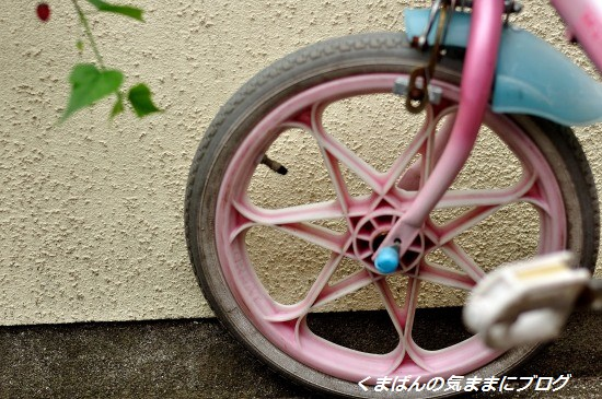 Nikon_20130608_143007_01.jpg