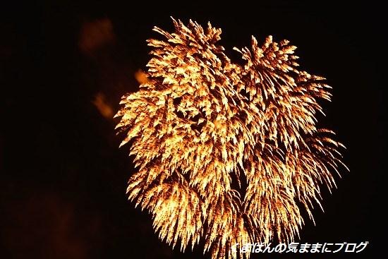 Nikon_20130728_210526.jpg