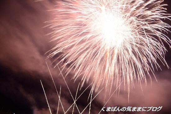 Nikon_20130728_212514.jpg