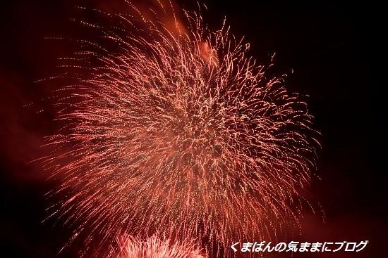 Nikon_20130728_212533.jpg