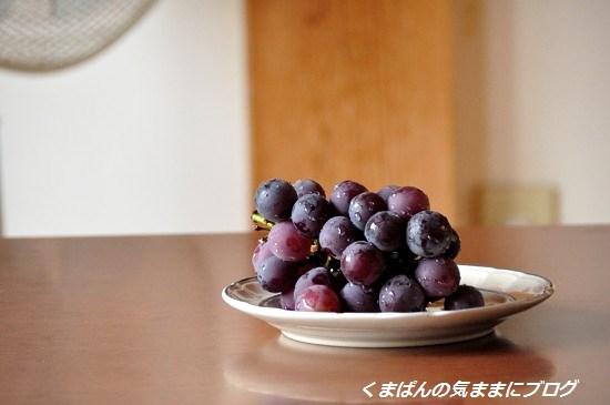 Nikon_20130814_121659_01.jpg