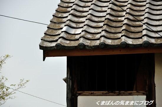 Nikon_20130814_125531.jpg