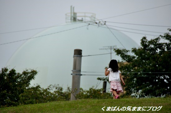 Nikon_20130914_162205.jpg