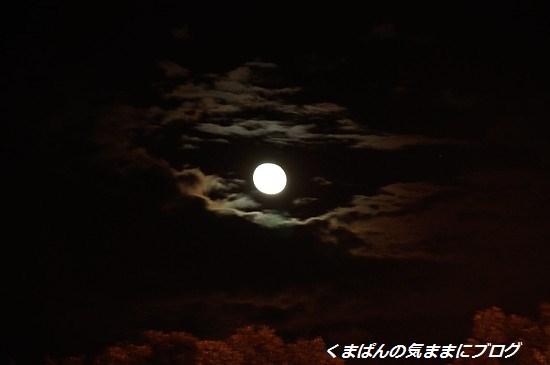 Nikon_20130921_202007.jpg