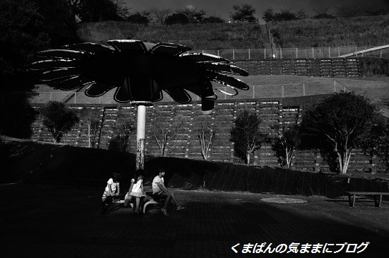 Nikon_20130928_170047_01.jpg