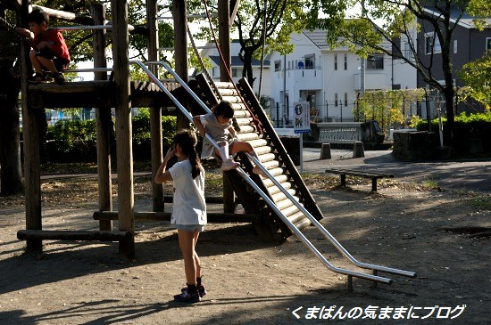 Nikon_20131020_154027.jpg