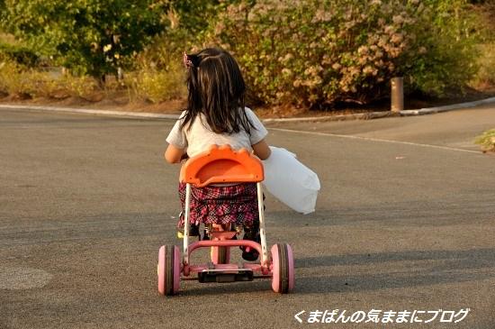 Nikon_20131021_163859.jpg