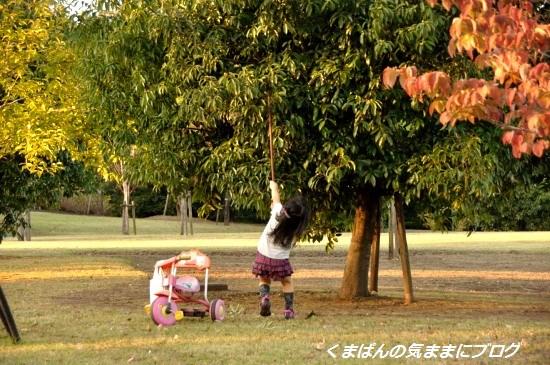 Nikon_20131021_170228000.jpg