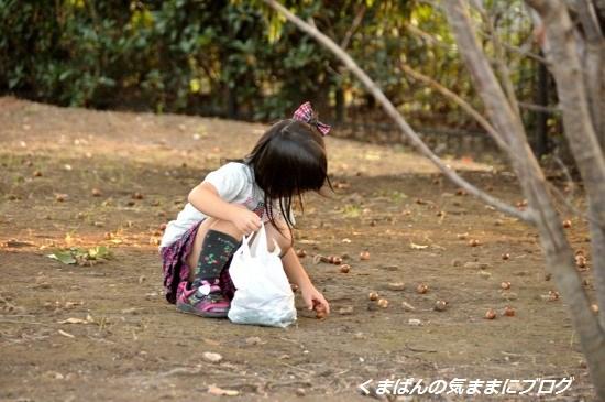 Nikon_20131021_170835.jpg