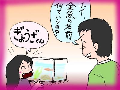 chinokingyo02.jpg