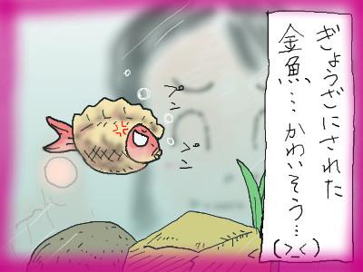 chinokingyo04.jpg