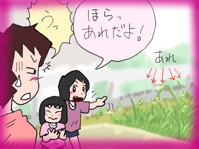 mamakusakari02.jpg