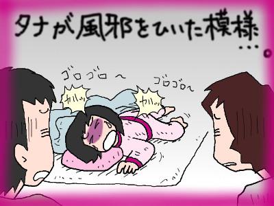 tanakahakaha04.jpg