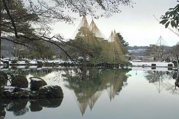 新春の兼六園雪吊り風景