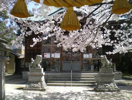 新しい牛坂神社の狛犬