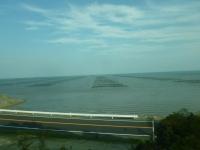 有明海の海苔養殖131215