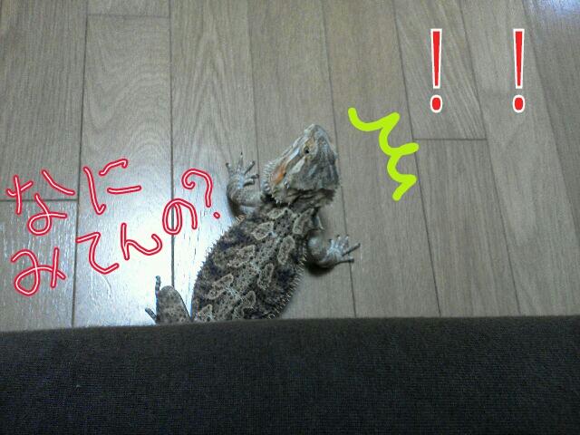 PicsArt_1380082404823.jpg