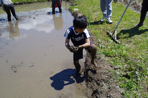 田植え2013・5・13