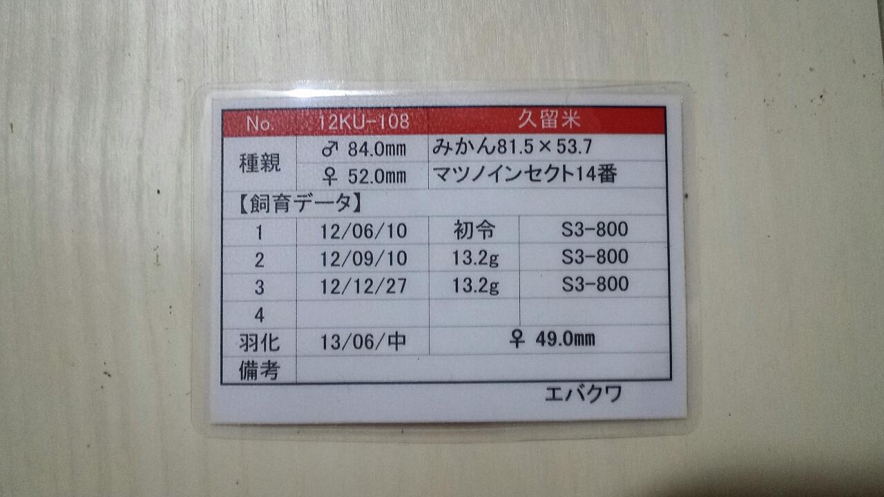 2013-09-24-19-12-26_deco.jpg