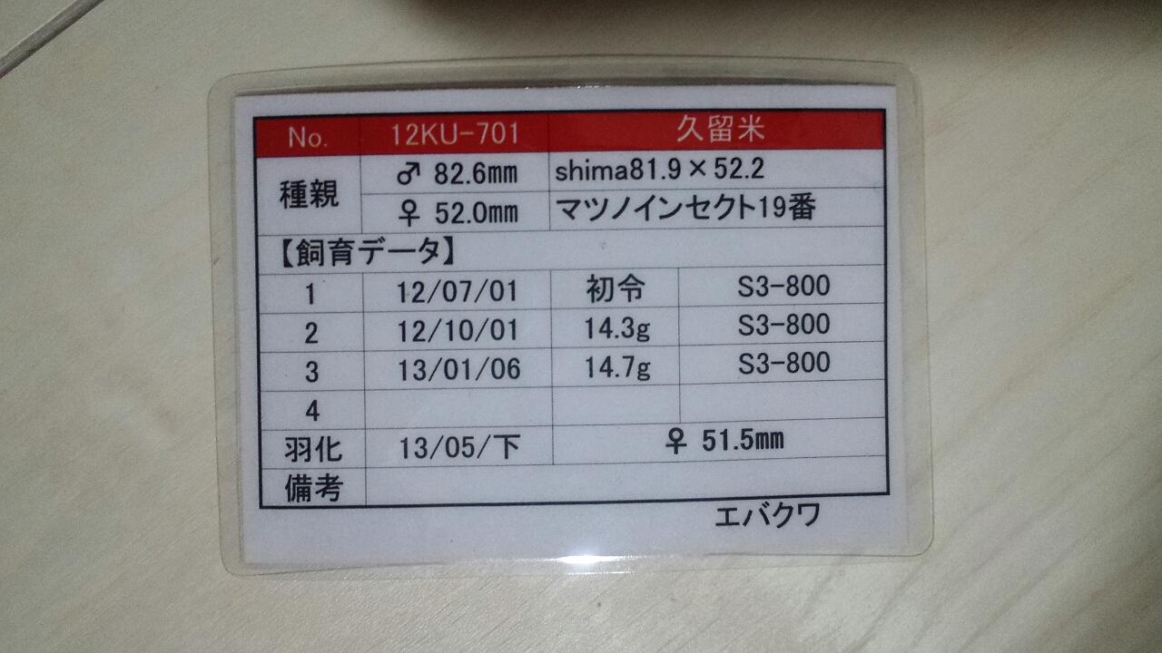 2013-09-24-19-15-03_deco.jpg