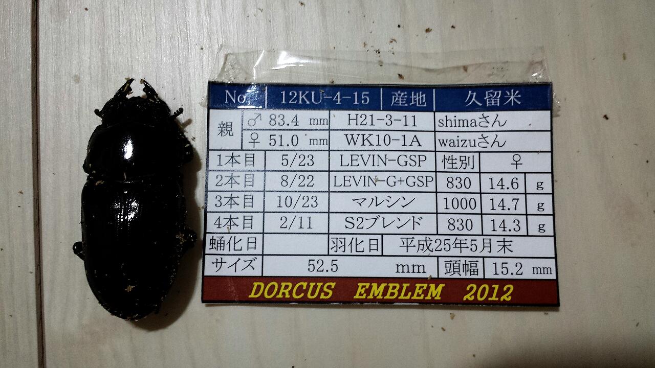 2013-10-07-20-41-07_deco.jpg