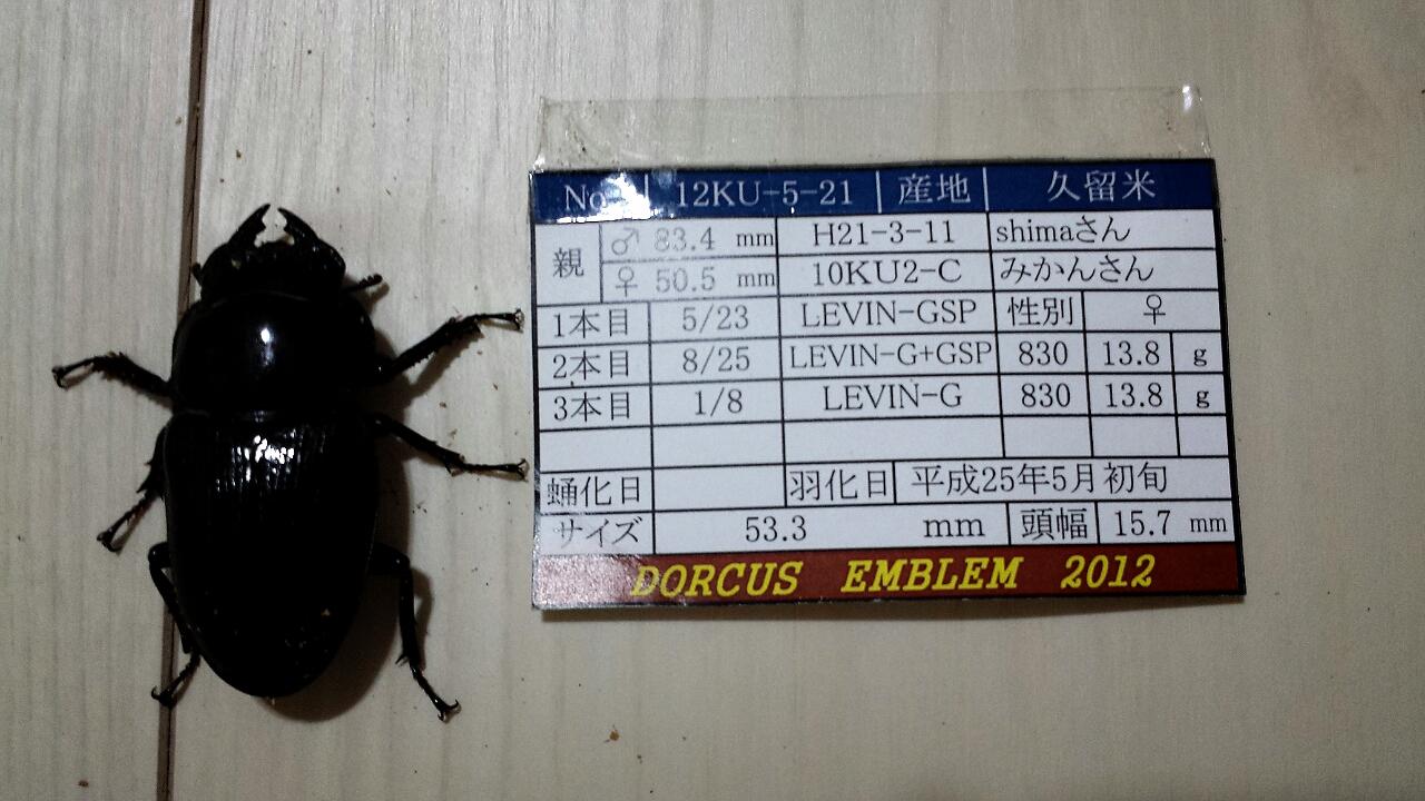 2013-10-07-20-42-11_deco.jpg