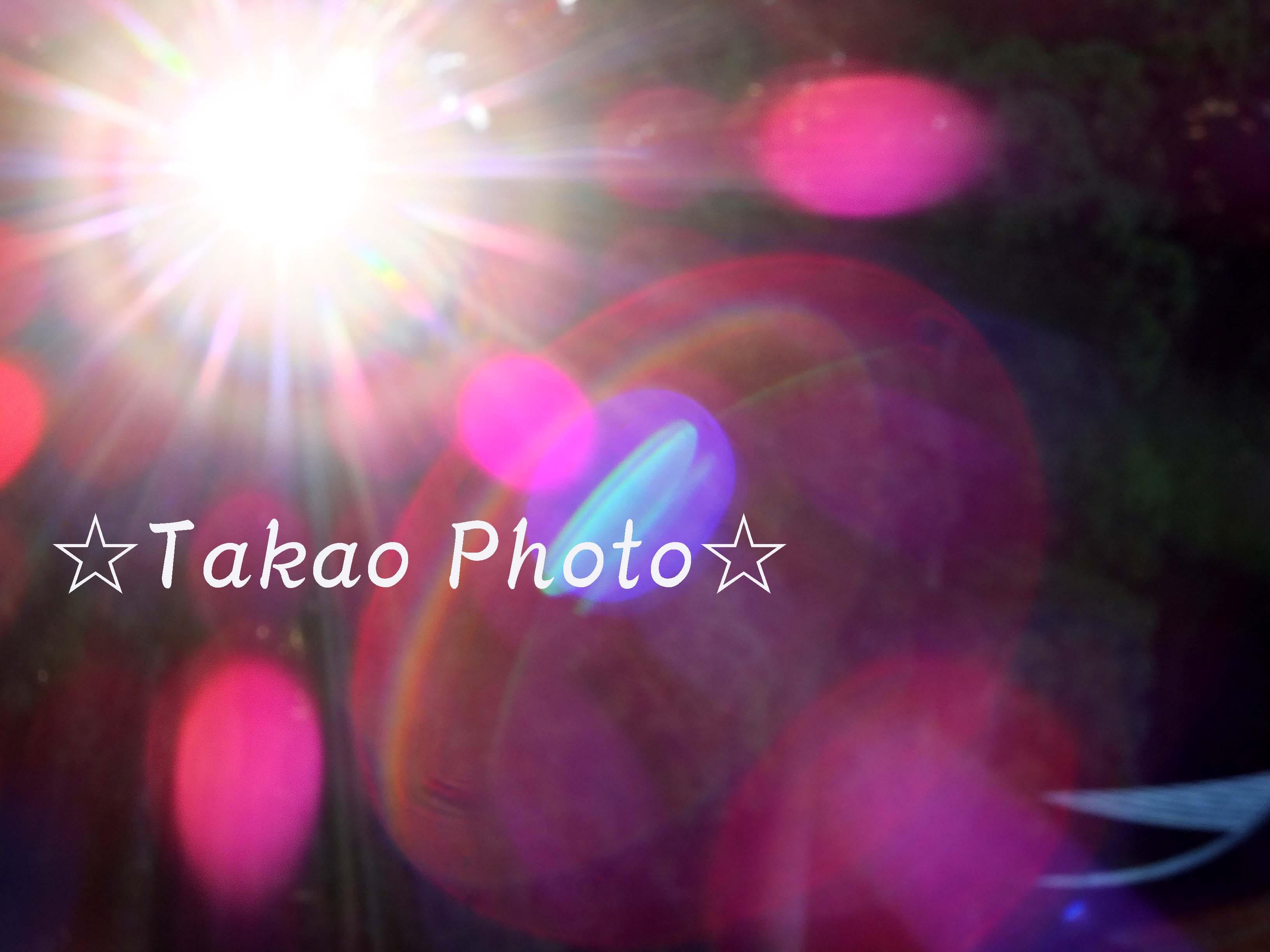 2014_1024_154110-DSCF5440のコピー