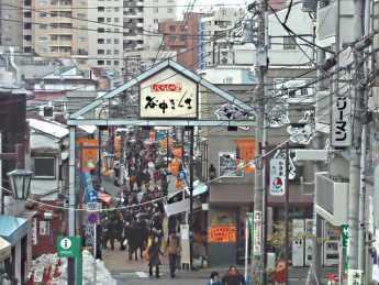 2014-2-12谷中