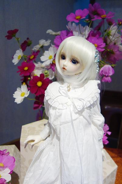 DSC00309.png