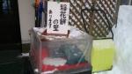 9_お土産[2013-12-30]