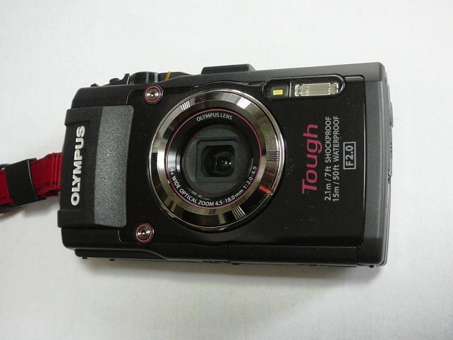 P1090133.jpg