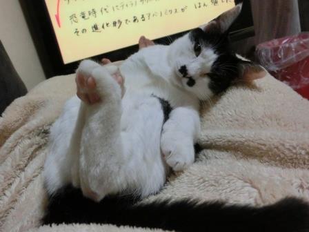 1021あがる (3)