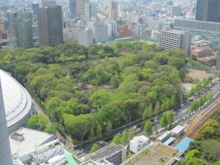 南西に見える小石川後楽園。左端には東京ドームがわずかに見える。