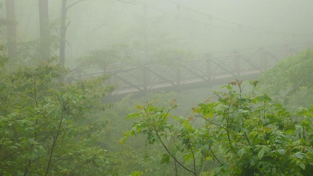 _霧のつり橋