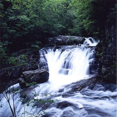 竜ばみ出会い滝