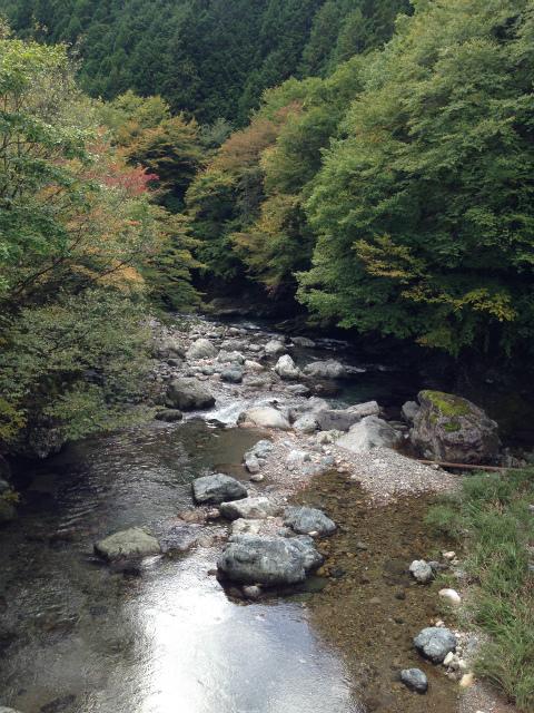 s-kouyaIMG_3017.jpg