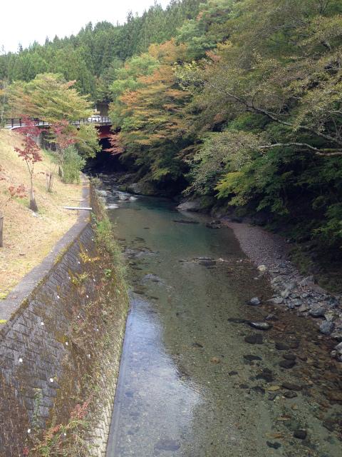 s-kouyaIMG_3018.jpg
