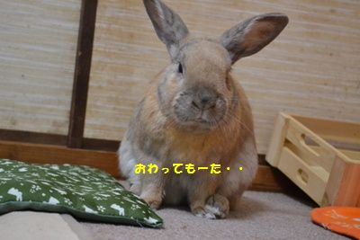 056_20140106101029c84.jpg